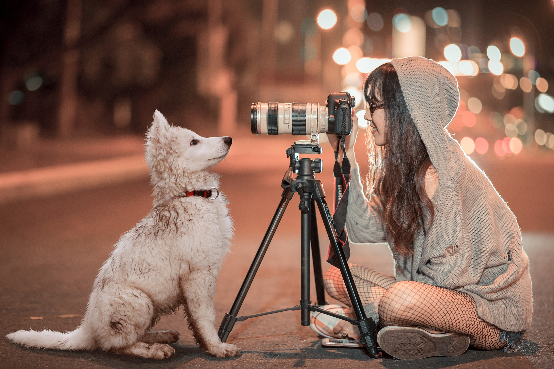 Woman on street with tripod showing how to teach a dog to pose for photo