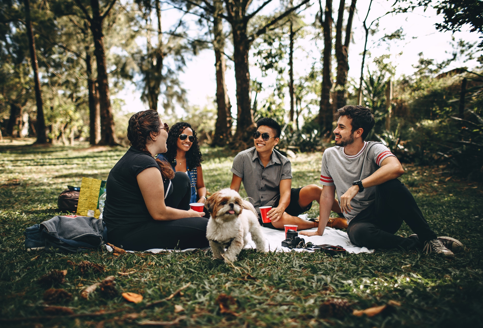 Man with dog at picnic because he knows how to choose a dog breed that suits him